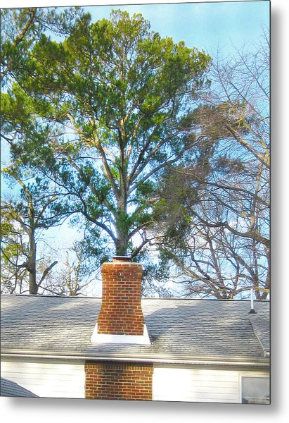 Chimney Tree Metal Print