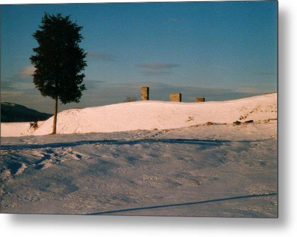 Chimneys And Tree Metal Print by David Fiske