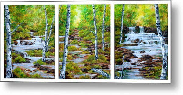 Chris And Willy's Falls Metal Print