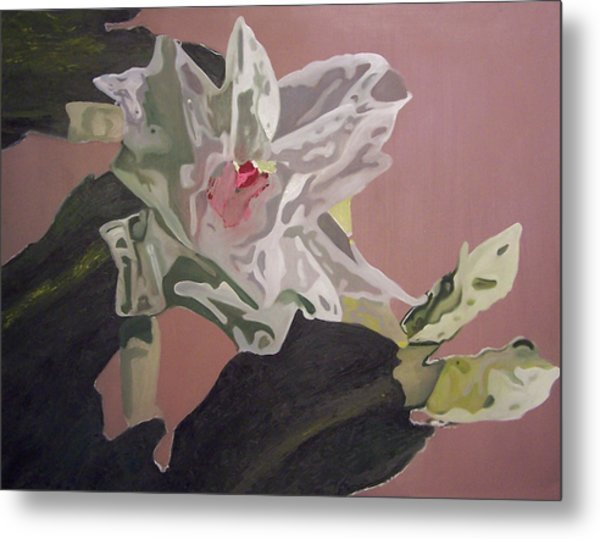 Christmas Bloom Metal Print