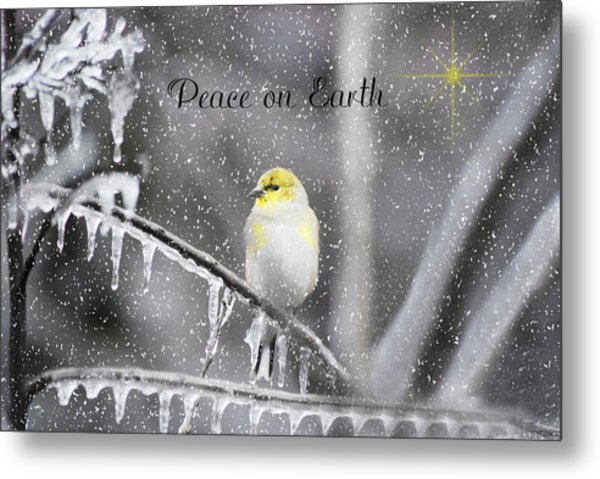 Christmas Peace Metal Print