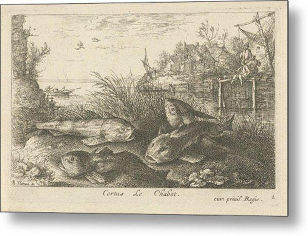Chub, Squalius Cephalus On A Riverbank, Print Maker Albert Metal Print by Albert Flamen And Jacques Van Merlen