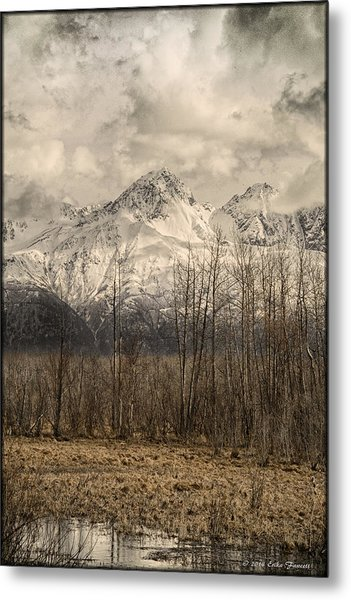 Chugach Mountains In Storm Metal Print