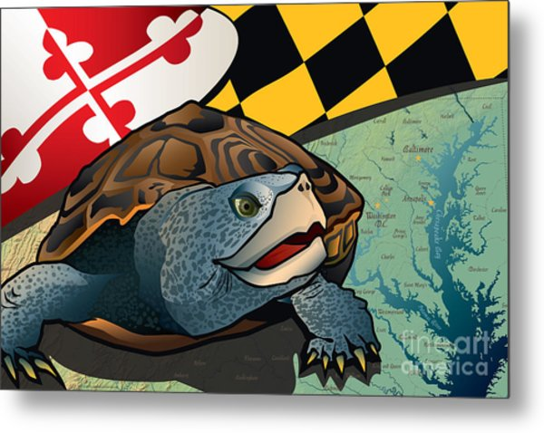 Citizen Terrapin Maryland's Turtle Metal Print