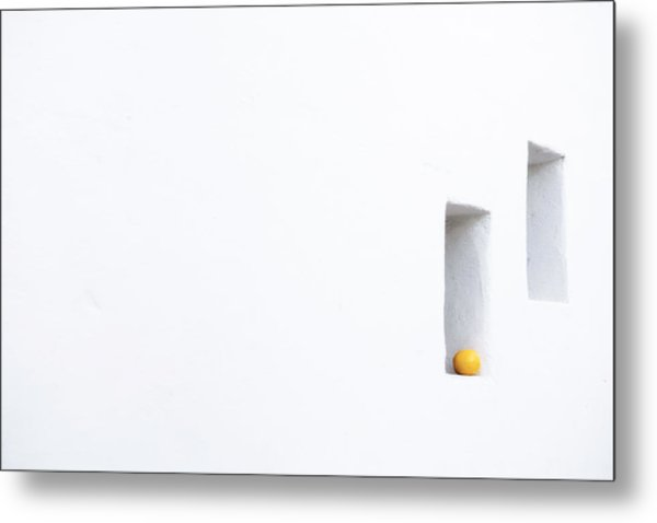 Citrus Simplicity Metal Print