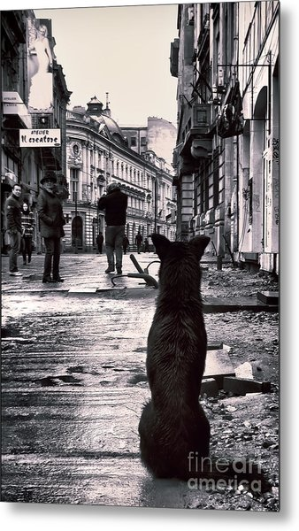 City Streets And The Theory Of Waiting Metal Print