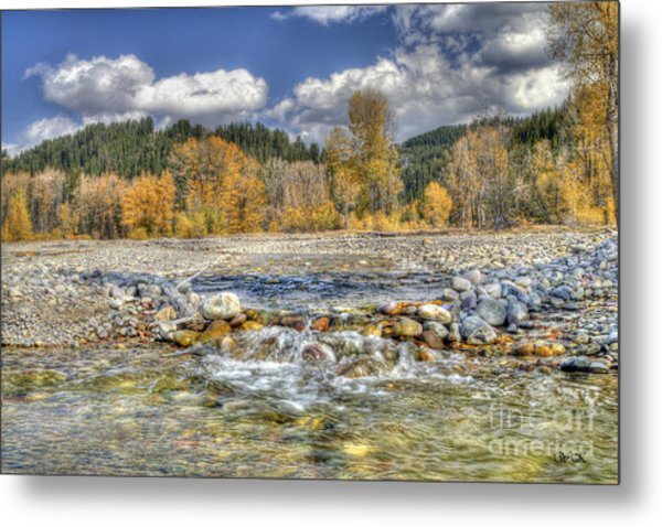 Clear Stream Metal Print