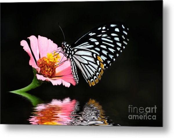 Metal Print featuring the photograph Cliche by Lois Bryan