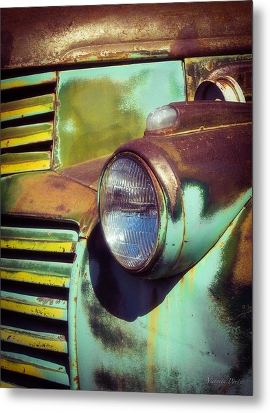 Close View Of A Fading Beauty Metal Print
