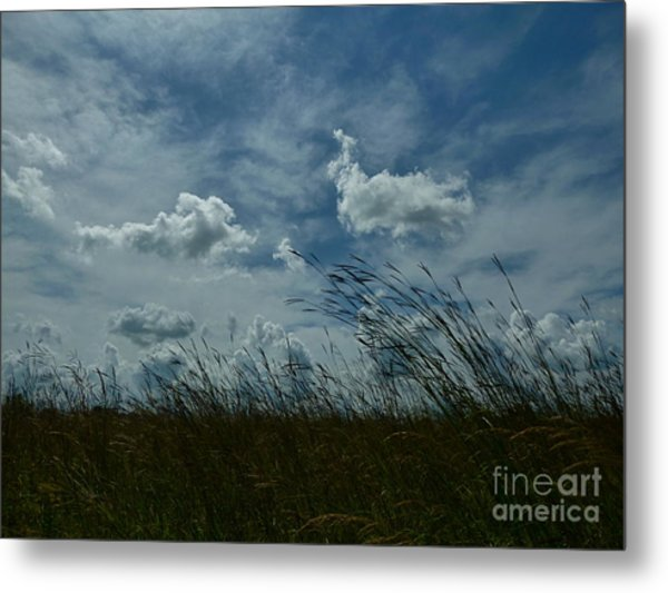 Clouds And Grass Metal Print