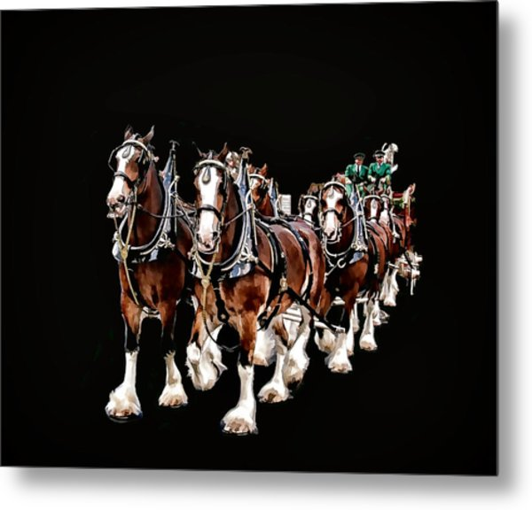 Clydesdales Hitch Metal Print