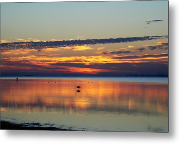 Co Existing Metal Print by Michele Kaiser