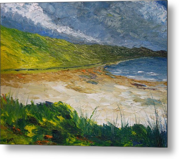Coastal Road To Barleycove Metal Print