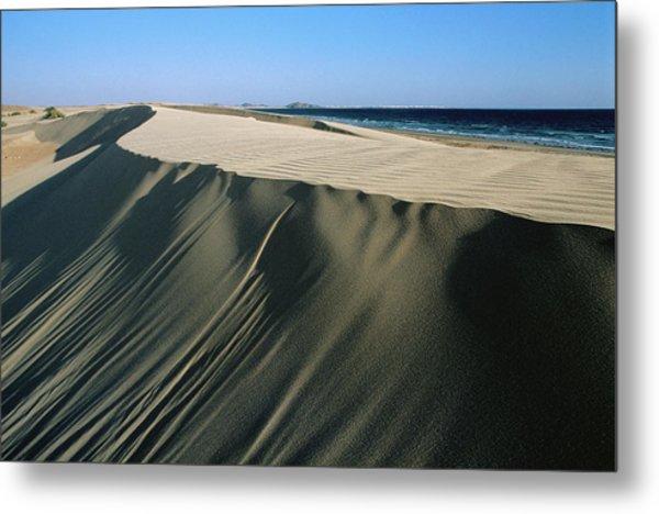 Coastal Sand Dunes On Beach West Of Metal Print