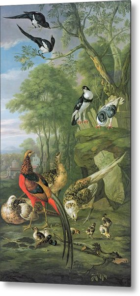 Cock Pheasant Hen Pheasant And Chicks And Other Birds In A Classical Landscape Metal Print