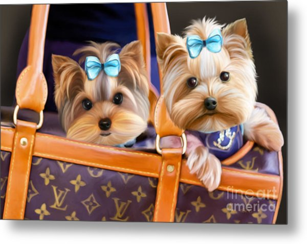 Coco And Lola Metal Print