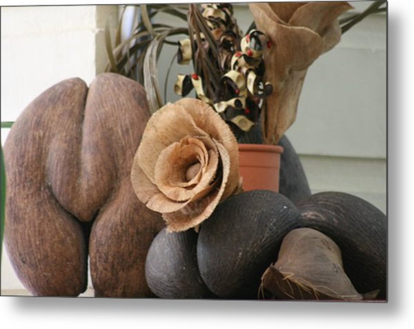 Metal Print featuring the photograph Coco Du Mer by Debbie Cundy