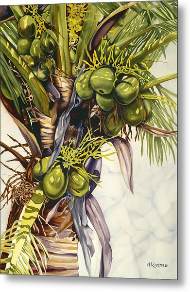 Coconut Bouquet Metal Print