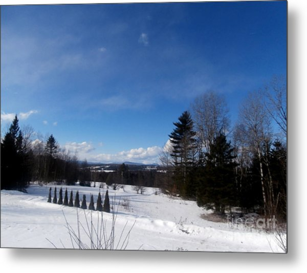Cold Winter's Day Metal Print by Steven Valkenberg