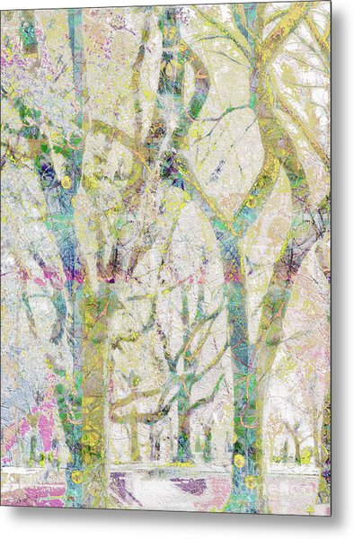 Collage Of Trees Metal Print