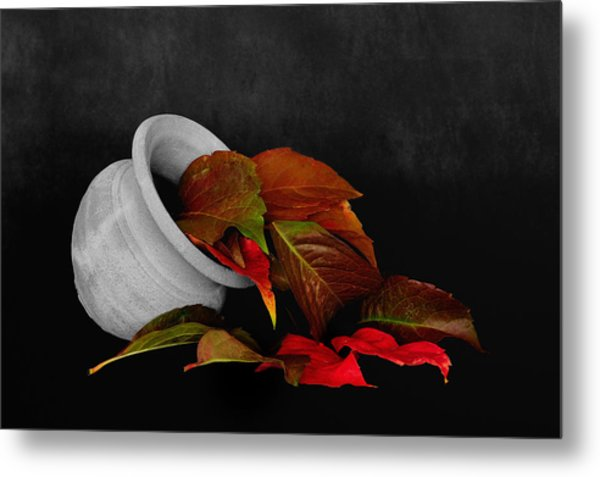 Collecting The Autumn Colors Metal Print
