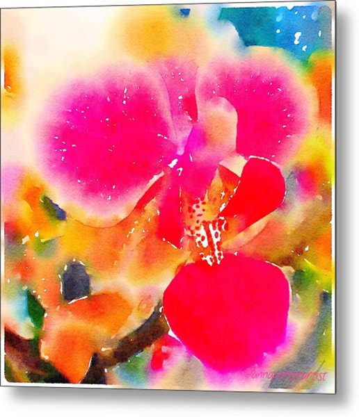 Color Me Bright Abstract Orchid Metal Print