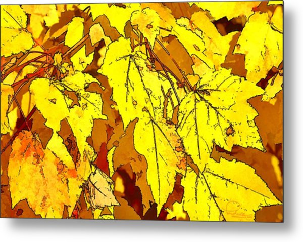 Color Of Fall Metal Print