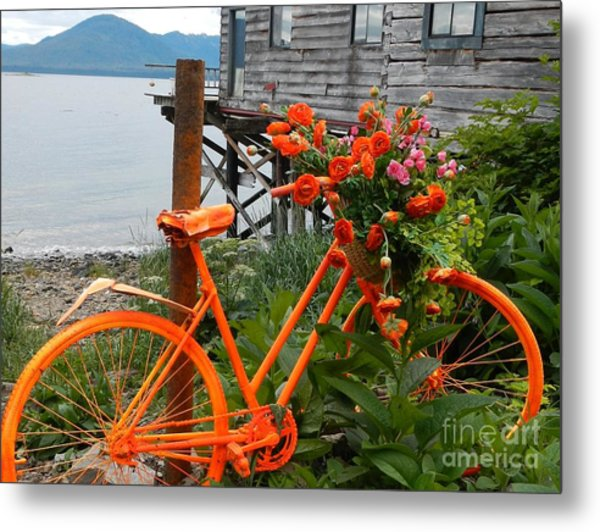 Color Of Tenakee  Metal Print