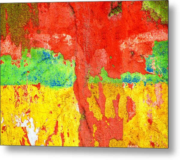Color Splash  Metal Print