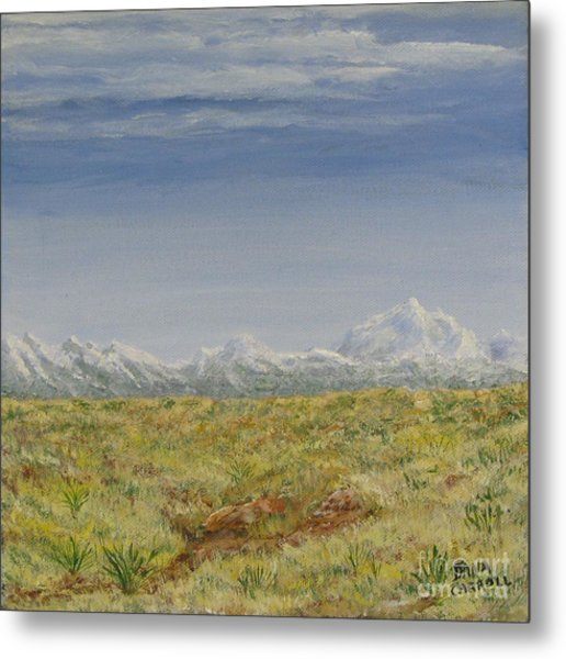 Colorado Eastern Plains Metal Print by Dana Carroll