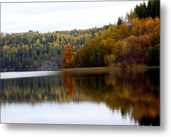 Colored By Fall Metal Print