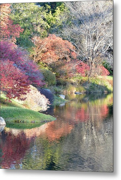 Colored Reflections Metal Print by Lena Hatch