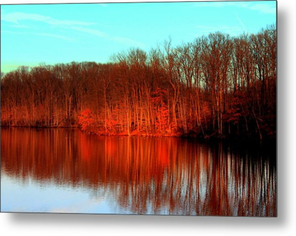 Colorful Afternoon Metal Print by Jose Lopez