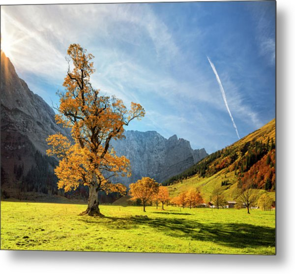 Colorful Autumn At Ahornboden In Metal Print by Dietermeyrl