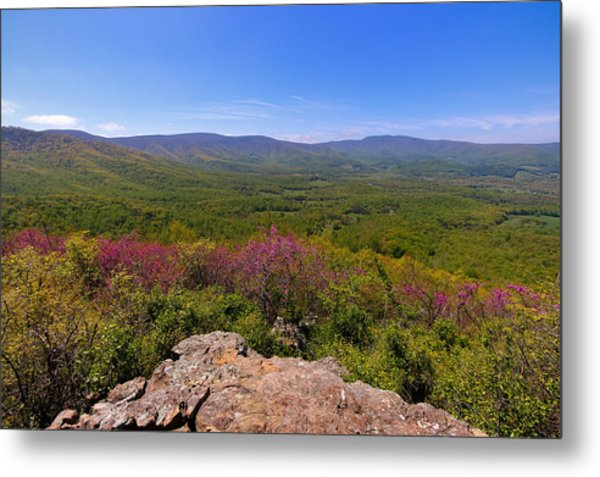 Colorful Blue Ridge Spring Metal Print