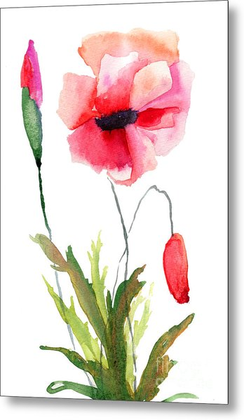 Colorful Poppy Flowers Metal Print