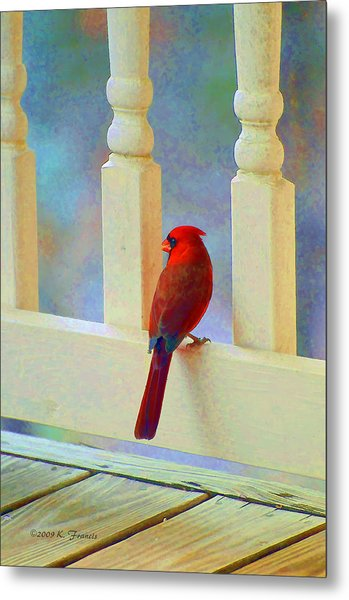 Colorful Redbird Metal Print