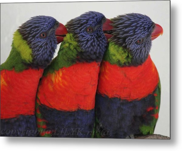 Colorful Therapy Metal Print