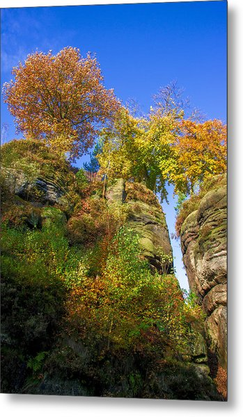 Colorful Trees In The Elbe Sandstone Mountains Metal Print