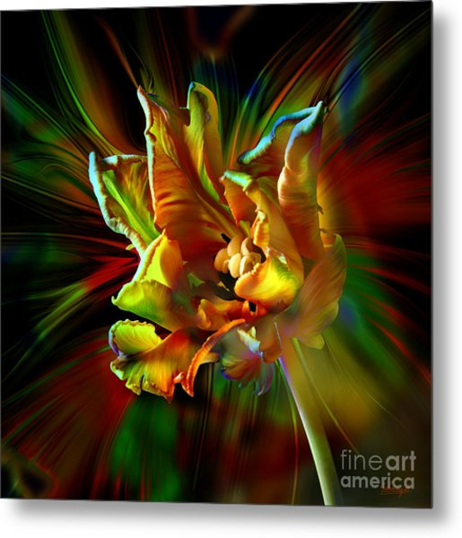 Colorfull Tulip Metal Print