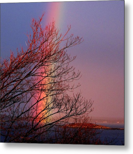 Colors From The Sky Metal Print