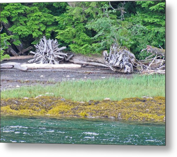 Colors Of Alaska - Layers Of Greens Metal Print
