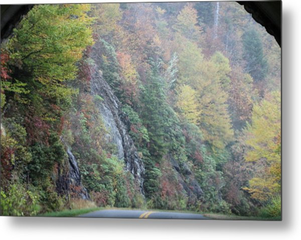 Colors Of Fall Metal Print by Melony McAuley