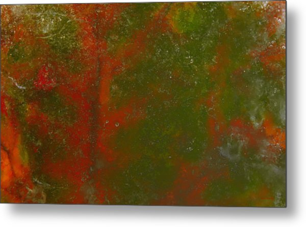 Metal Print featuring the photograph Colors Of Nature 12 by Sami Tiainen