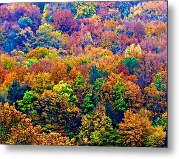 Colors To Winter 2 Metal Print