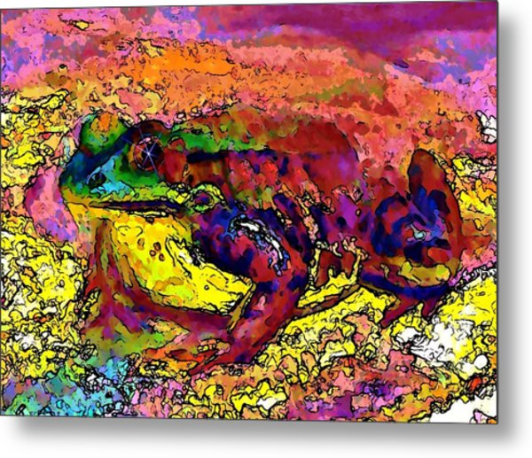 Colour Frog 2 Metal Print