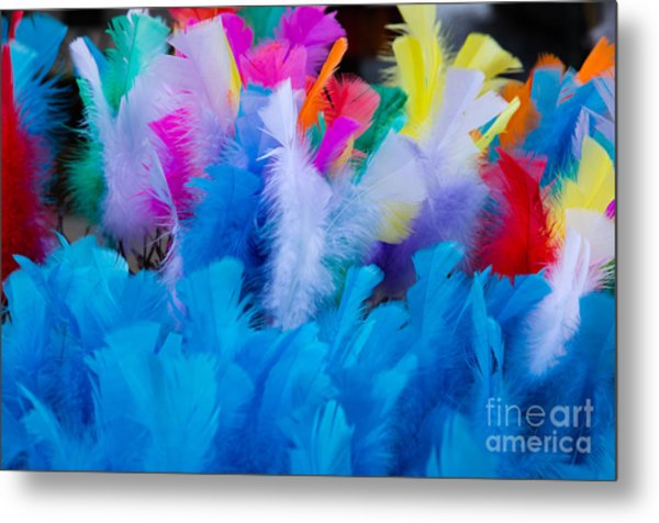 Coloured Easter Feathers Metal Print