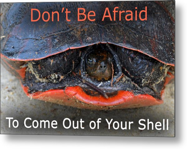 Come Out Of Your Shell Metal Print