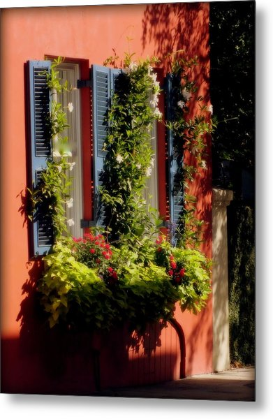 Come To My Window Metal Print