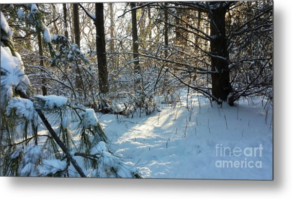 Come Warmth Of Winter's Sun Metal Print